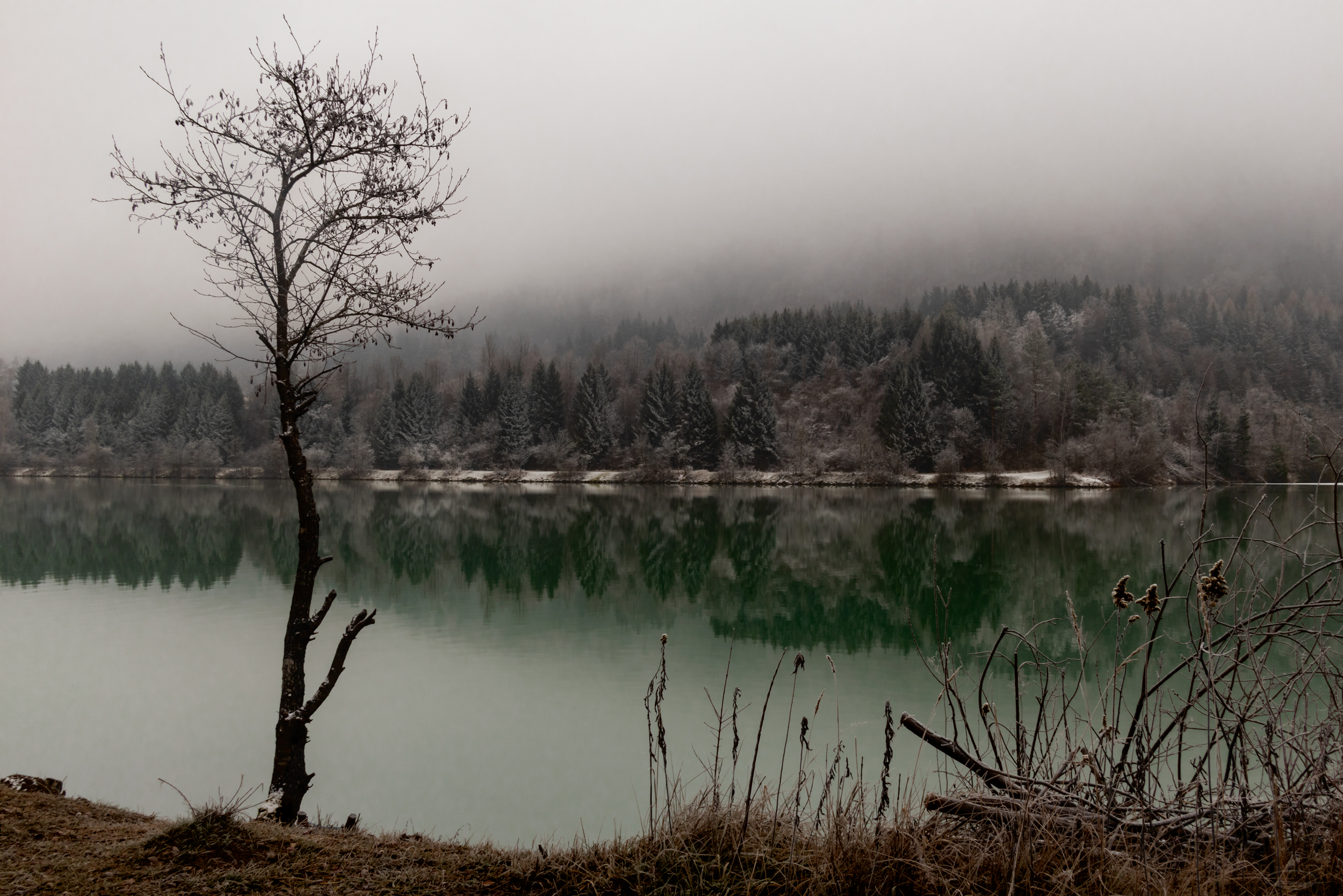 Misty Morning at the Drau River